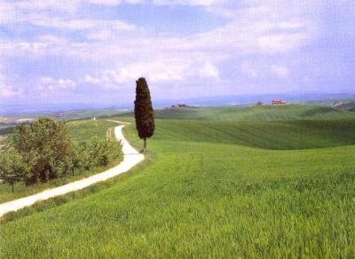 une route blanche