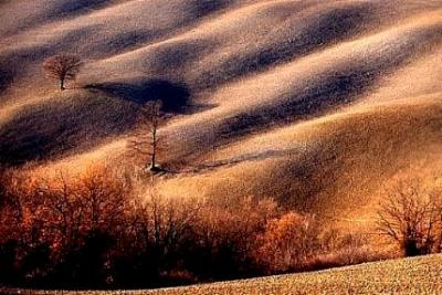 photo Silvano Monchi 7